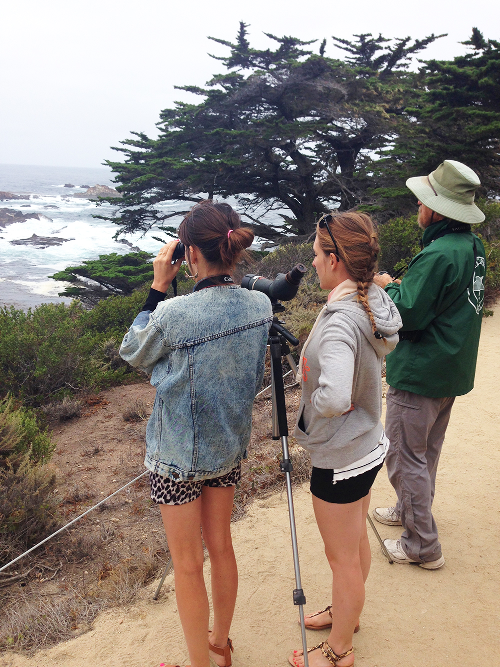 blog-todaywillbegreat-bigsur03