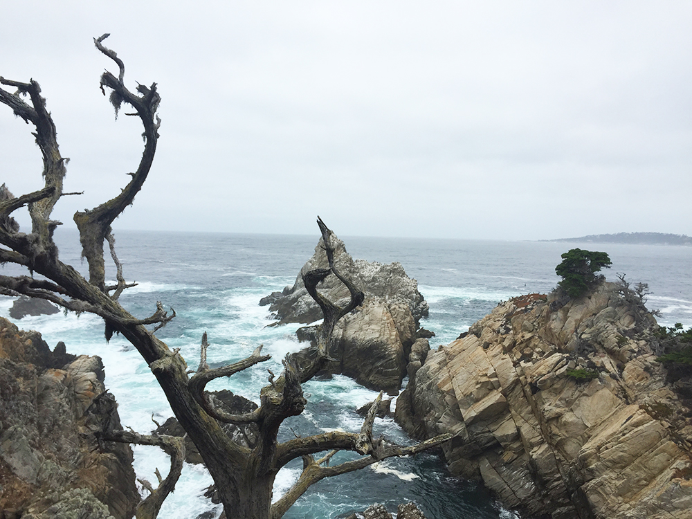 blog-todaywillbegreat-bigsur05