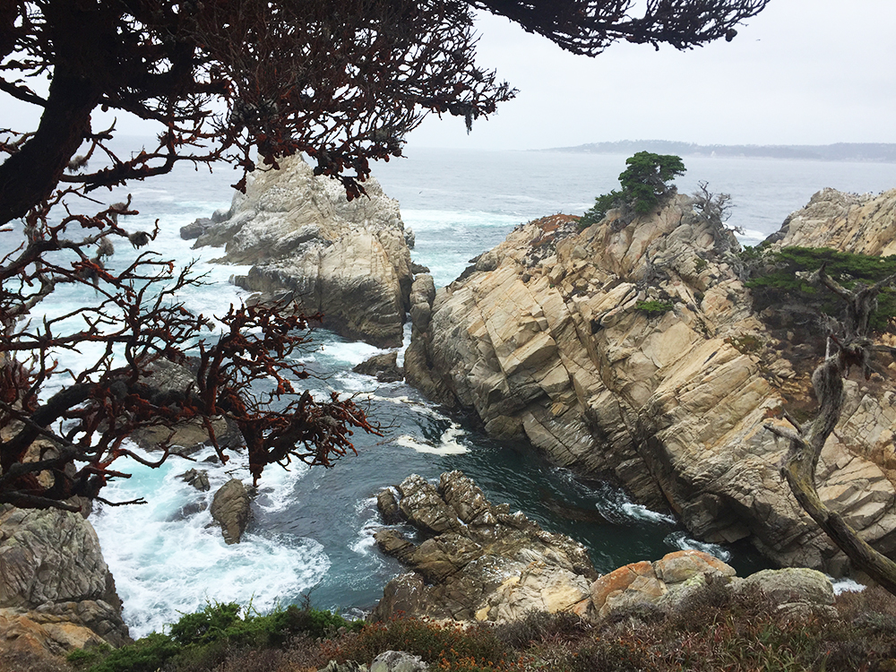 blog-todaywillbegreat-bigsur07